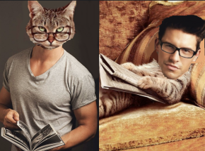 Sexy Cats and Adorable Men in Similar Poses