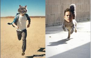 hotguycats11